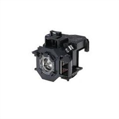 Image of EPS451062