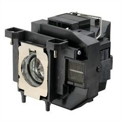 Image of EPS556122